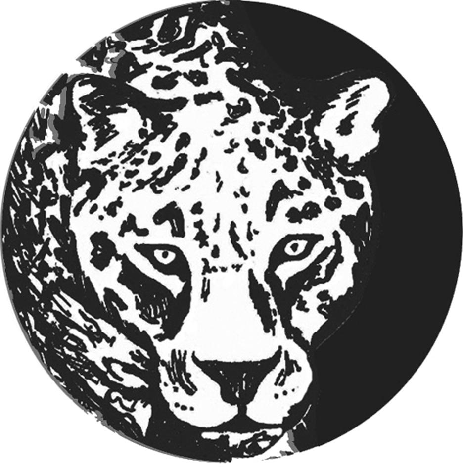 Jaguar Path, Sacred Valley, Peru