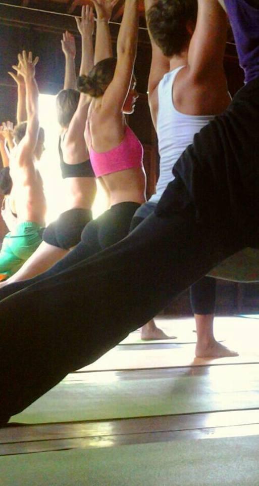 Wild Rose Yoga Studio