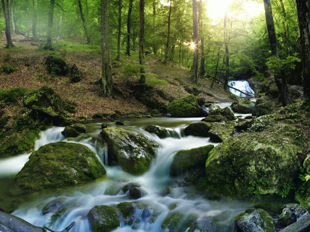 Dartmoor Retreat