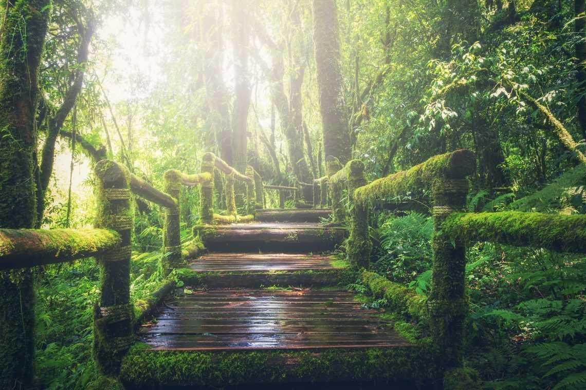Selfhood: The Third Step on the Spiritual Journey