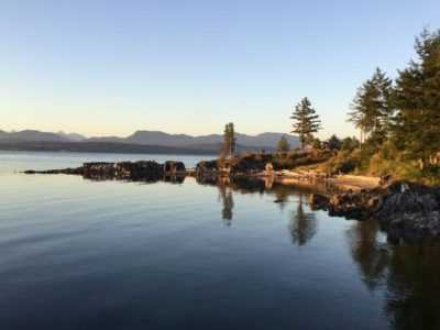 25 Days 300 Hours Alignment-Focused YTT with Daniel Clement in British Columbia, Canada
