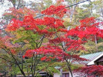 Karuizawa Retreat Center