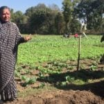 A message from Dr Vandana Shiva for the New Year 2020