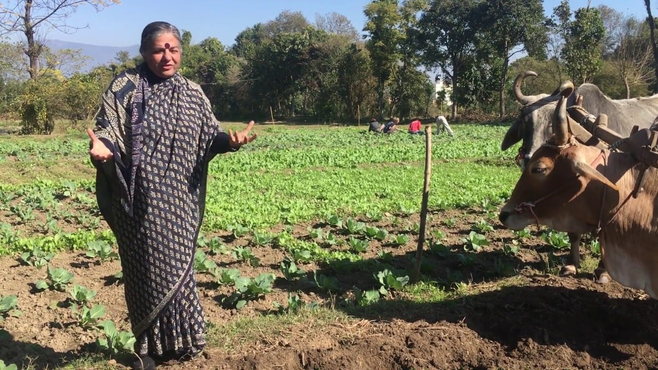 A message from Dr Vandana Shiva for the New Year 2020 6