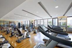 Fitness & Wellness (inside Mandarin Oriental, Jakarta)